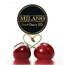 Табак Milano Sweet Cherry (Cладкая Вишня) - 100 грамм